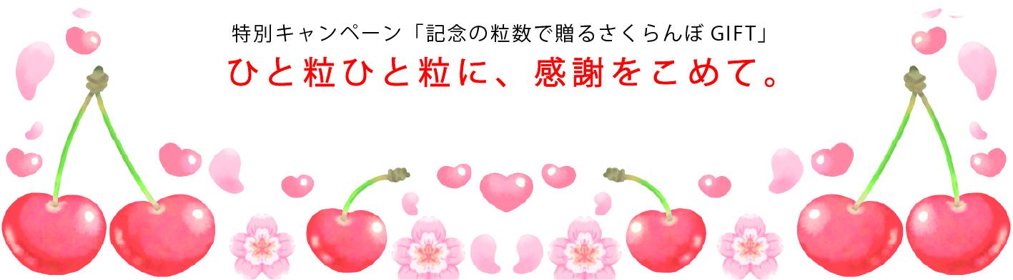 特別キャンペーン「記念の粒数で贈るさくらんぼGIFT」ひと粒ひと粒に、感謝をこめて。